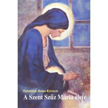 A Szent Szűz Mária élete - Emmerick Anna Katalin