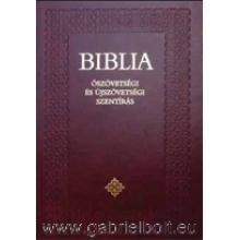 Biblia - Családi 17x24 cm