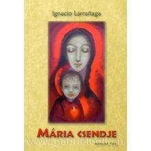 Mária csendje - Ignacio Larranaga